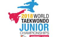 Taekvondoçularımız üçün öncə lisenziya turniri, sonra dünya birinciliyi
