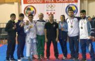 Karateçilərimiz Xorvatiyadan 10 medalla qayıdır